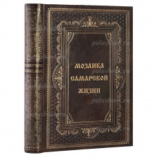 В. Н. Казарин. Мозаика самарской жизни